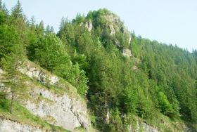 Valea Ariesului